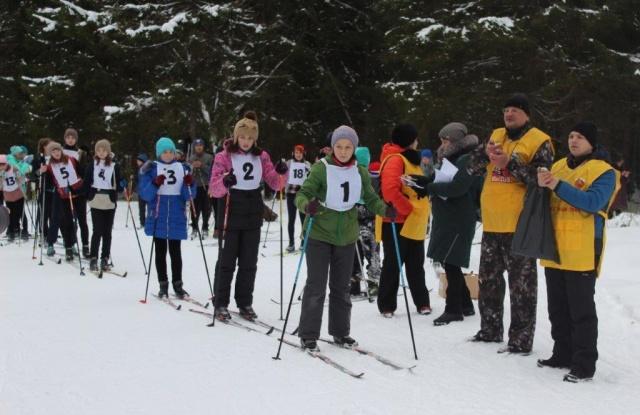 Елки, палки, лыжи